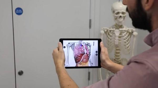 AR Anatomie